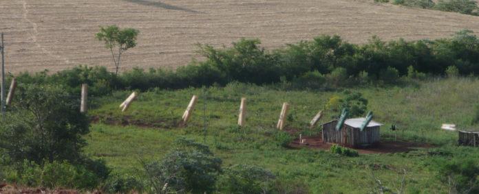 Bei Tenente Portela treffen traditionelle Ackerflächen auf Monokultur. Foto: Zeller